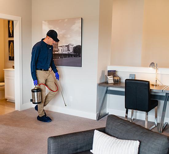 indoor pest control spraying